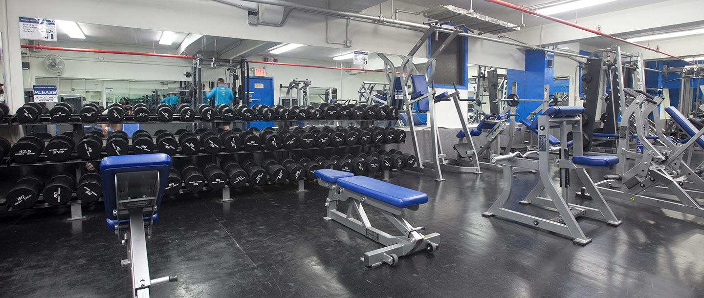 Weights and strength training equipment at the Greenpoint YMCA.
